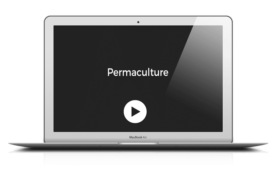 mock-up-permaculture